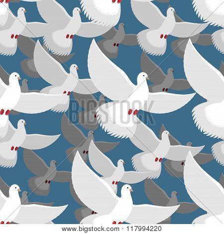 White Dove Seamless Pattern. Flock Of White Doves In Blue Sky. Ttexture Of Flying Bird. White Pigeon