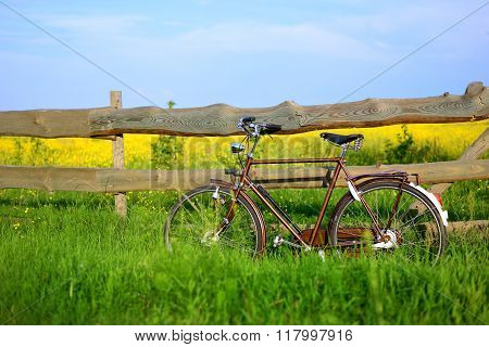 Old Vintage Brown Bicycle Near The Fence Of A Flower Field. Shallow Depth Of Field