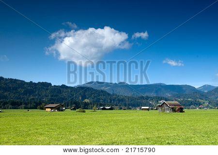 Pasture In Bavaria