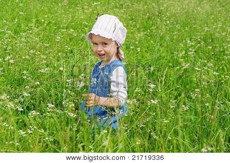 The little girl in a meadow