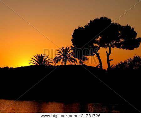 Sunset With Silhouette Palm Trees And Sea
