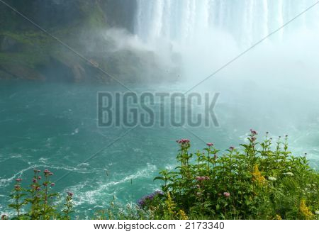 Cliff View mit Wildblumen