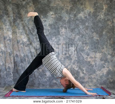 Woman Doing Yoga Posture Eka Pada Adho Mukha Svanasana Or One Leg Downward Facing Dog  Pose