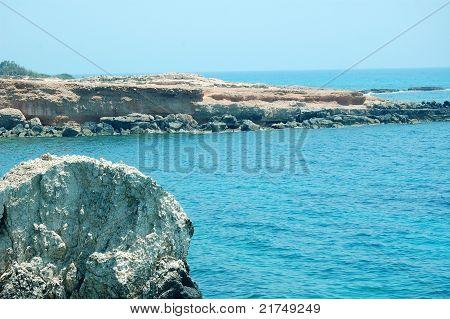 tropische Hintergrund