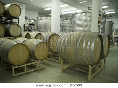 Wine Cellar Barrels And Vats