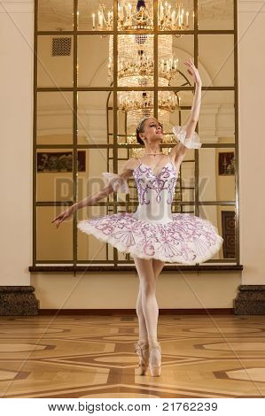 Ballerina In Ballet Pose