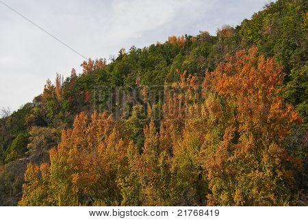 Autumn in the Alpujarra