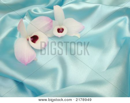 Orchid On Blue Satin