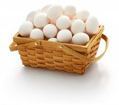 don't put all your eggs in one basket. american popular proverbs and sayings poster