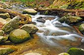 picture of abram  - Abrams Creek in the spring in the Smoky Mountains - JPG