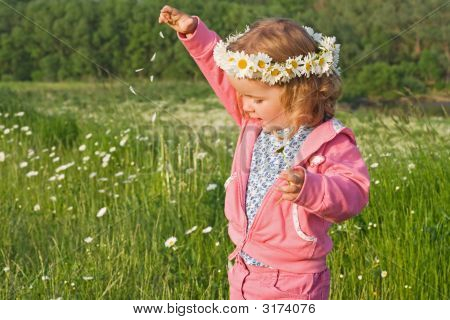 Little Girl Playing With Flower Petals