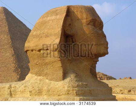 Sphinx  And Pyramids In Giza.