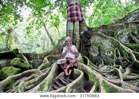 BALI, INDONESIA - JAN 23: An unknown man meditates under the tree on Jan 23, 2012 in Ubud, Bali, Indonesia.