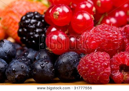 Wild fruits redcurrant, blackberry, raspberry and blueberry