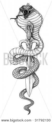 Snake sword detailed pencil drawing