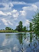 stock photo of paysage  - Spring landscape with a lake greenery and sky - JPG