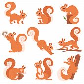 Cartoon Squirrel. Funny Forest Wild Animals Running Standing And Jumping Vector Squirrel Clip Art Co poster