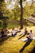 Group Of Young Women Meditate In City Park On Summer Sunny Morning Under Guidance Of Instructor. Gro poster