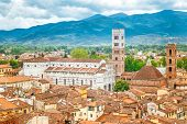 Top View Of The Lucca City In Tuscany, Italy, Europe. poster