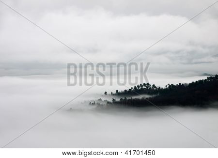 Blanket Of Fog And Hills - Birdseye View