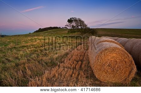 Hay bales in Summer sunset landscape