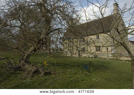 Woolsthorpe Manor And The Apple Tree