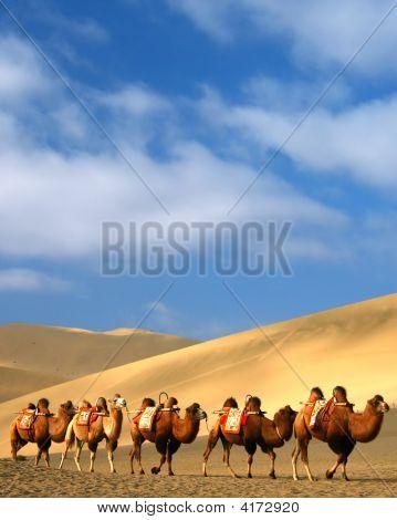 Desert, Dun Huang, China