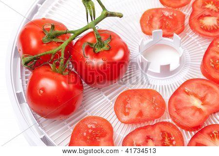 Fresh Tomato On Food Dehydrator Tray