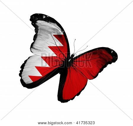 Bahraini Flag Butterfly Flying, Isolated On White Background