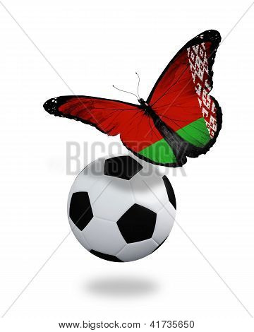 Concept - Butterfly With Belarussian Flag Flying Near The Ball, Like Football Team Playing
