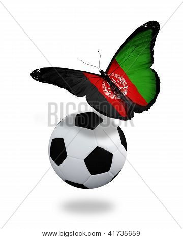 Concept - Butterfly With Afghani Flag Flying Near The Ball, Like Football Team Playing