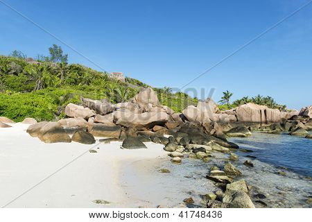 Tropical Beach La Digue Islans At Seychelles - Vacation Background