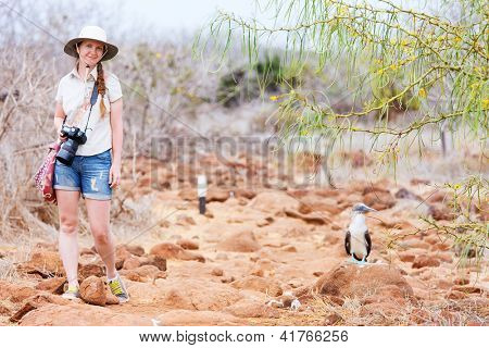 Female tourist near blue footed booby at Galapagos island of  North Seymour