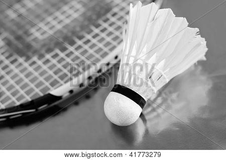 Badminton shuttlecock and racket