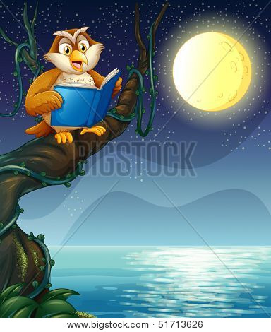 Illustration of an owl reading a book above a branch of a tree