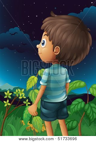 Illustration of a boy gazing at the sky