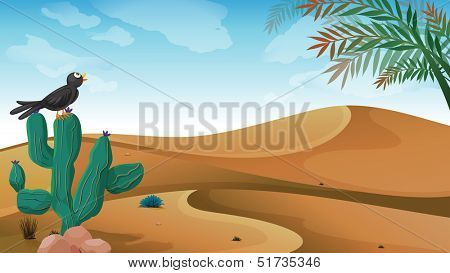 Illustration of a bird above the cactus plant at the desert