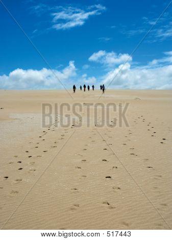 Sand Dune Walk