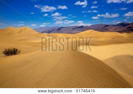 Mesquite Dunes desert in Death Valley National Park California