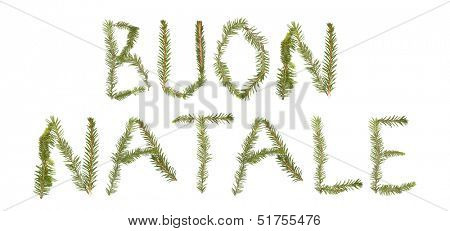 Spruce twigs forming the phrase 'BUON NATALE' isolated on white