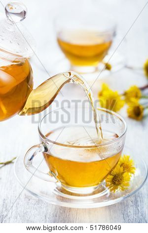 pouring herbal tea with coltsfoot flowers