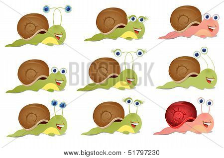 Set of three snails