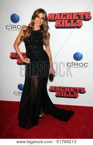 LOS ANGELES - OCT 2:  Sofia Vergara at the