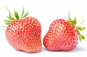 Two Strawberries Isolated Before White