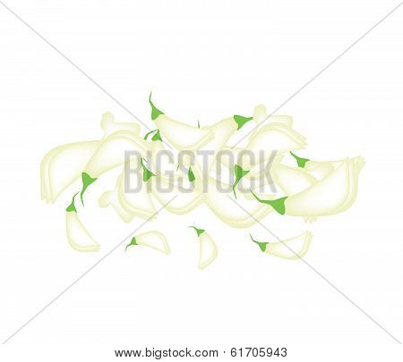 Fresh Sesban Agasta On White Background