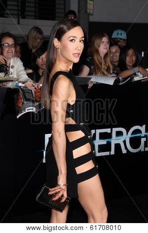 LOS ANGELES - MAR 18:  Maggie Q at the