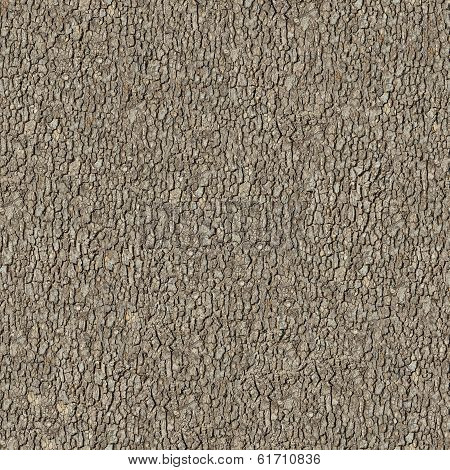 Elm Bark. Seamless Tileable Texture.