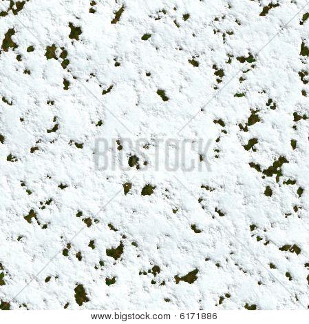 Seamless Snowdrift