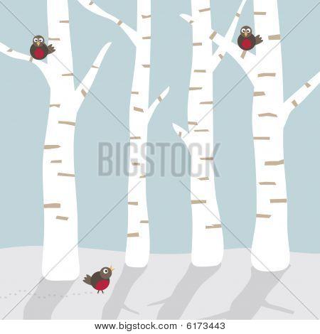 birke baum images stock photos illustrations bigstock. Black Bedroom Furniture Sets. Home Design Ideas