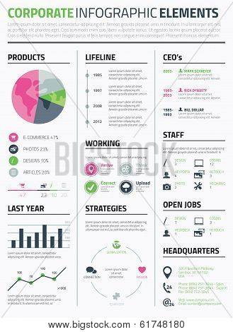 Corporate infographic resume elements to display data template vector